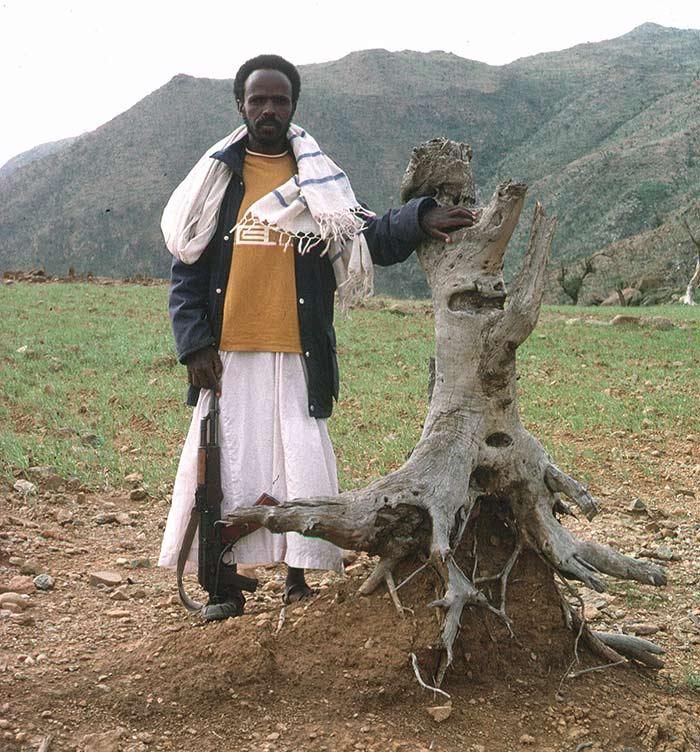 Laba-tree-pedestal